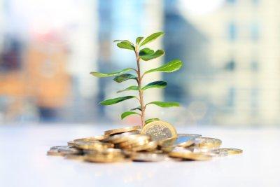 Finanz- und Investitionsrechnungen